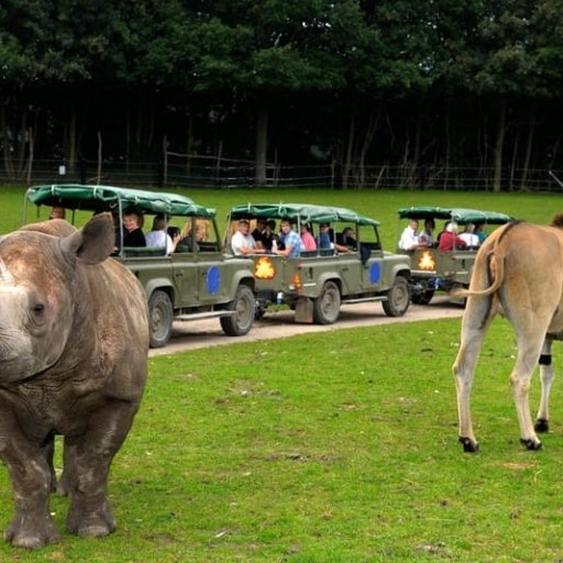 Reepark Safari