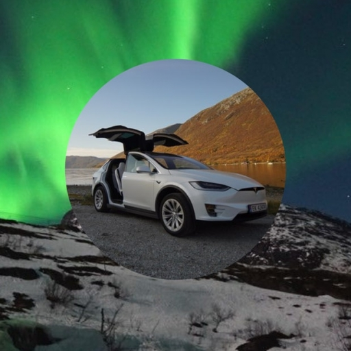 Northern Lights Wildlife Tour from Tromsø with eco-friendly Tesla Model X