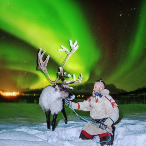 Reindeer Sledding and Northern Lights