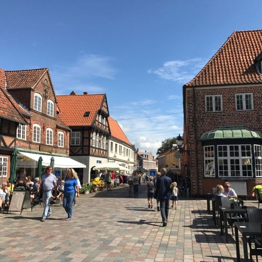 Ribe - the Old Viking Town